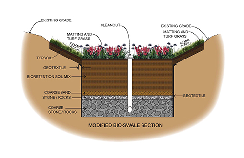 Bio-swale Section